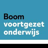 BoomVO