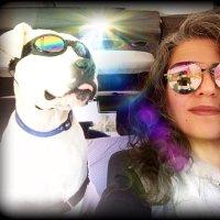 GypseaG ( @Gypseagina ) Twitter Profile