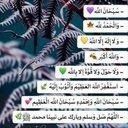 علاء الضاوي (@13HZoN0jhqLdf6b) Twitter