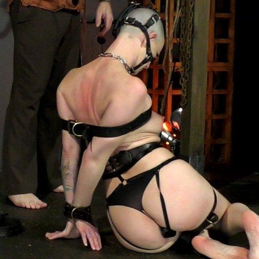 Victoria sweet pantyhose