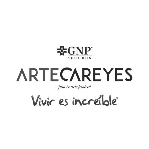 @artecareyes