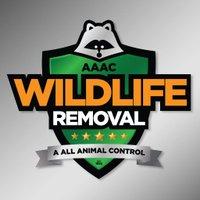 AAAC Wildlife Removal of Greensboro, NC