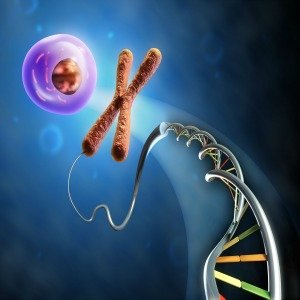 molecular biology molcularjournal twitter
