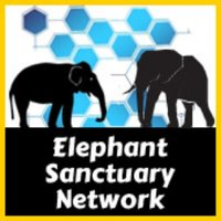 Elephant Sanctuary Network