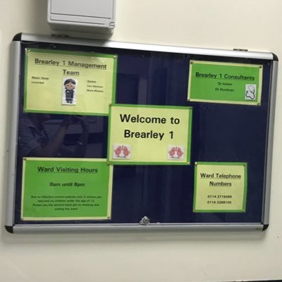 brearley risk assessment