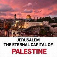 Jerusalem Eye