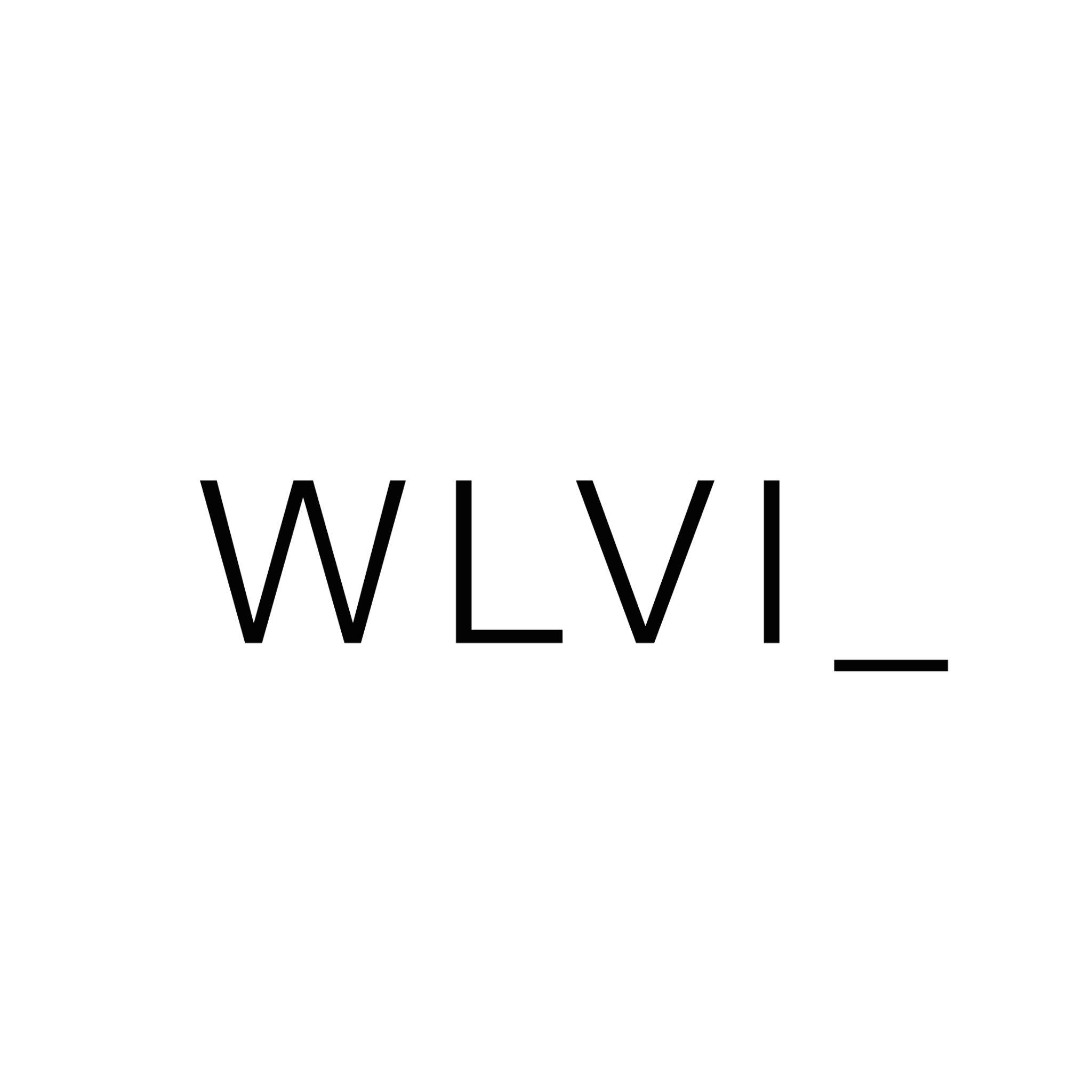 Logo de la société welivein