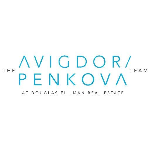 The Raphael Avigdor Team