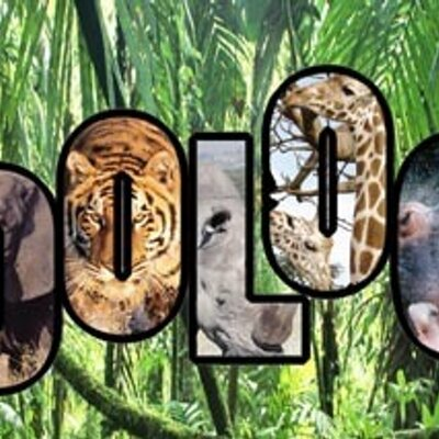 Zoology Club London (@Zoologyclub) | Twitter