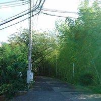 県立千葉高校地理部 (@CHS_chiri )