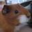 Kiwi_Jaja
