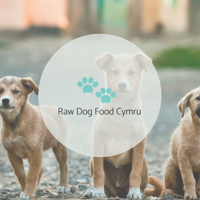 Raw Dog Food Cymru On Twitter The Chicken Feet Have Arrived