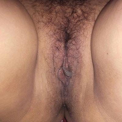 naked elephant fucking pictures