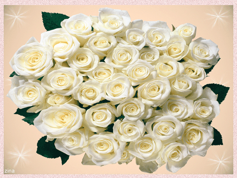 Картинки открытки, открытка к 8 марта с белыми розами