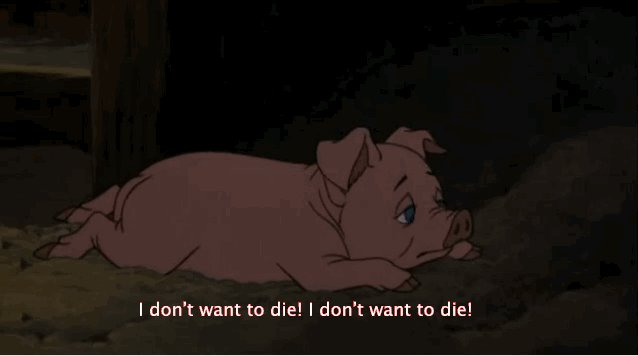#ThingsILearnedFromCartoons: No animal wants to die. https://t.co/lzKI...