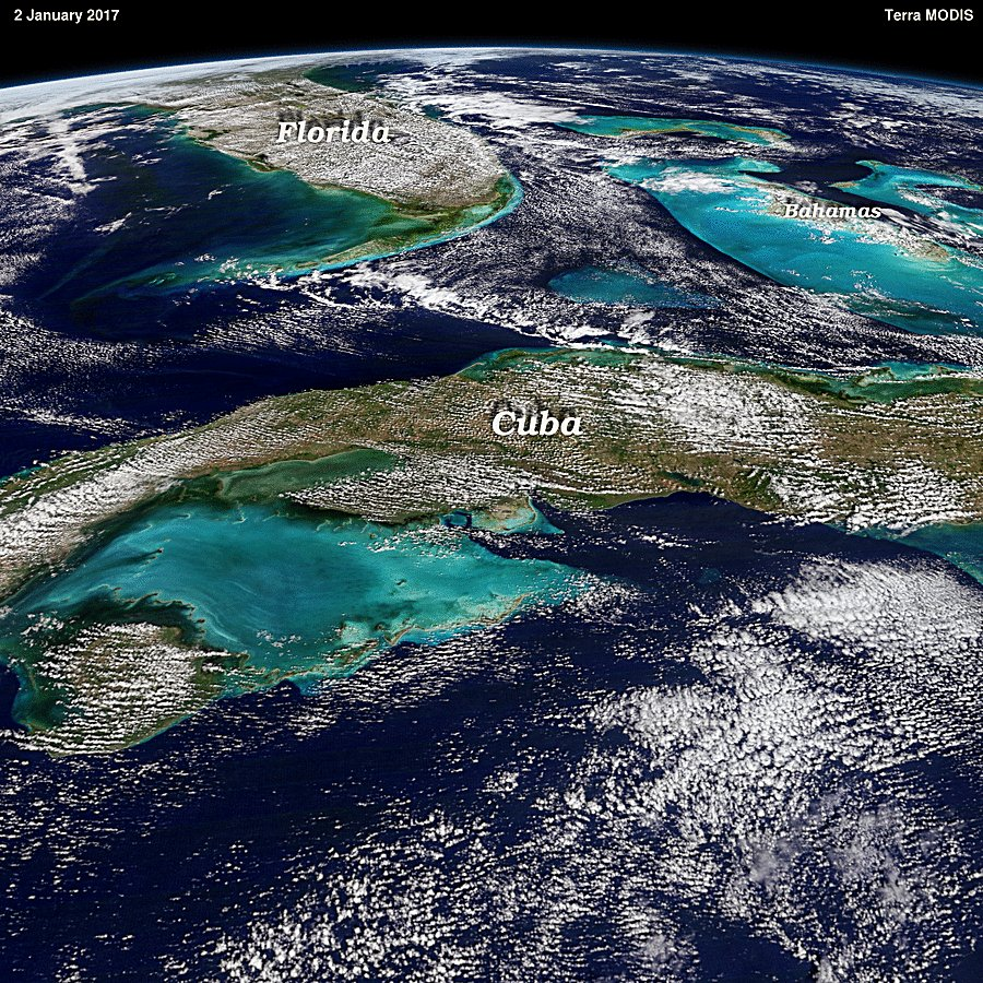 какой процент поверхности занимает мировой океан