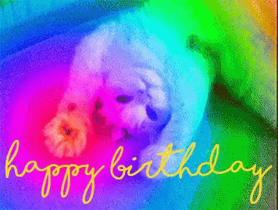 HAPPY BIRTHDAY, KATE McKINNON!!