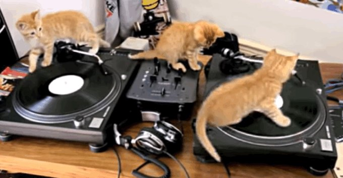 Happy #nationaldjday