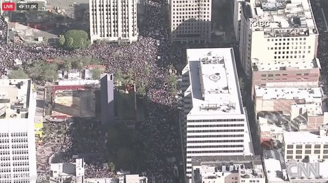 Aerial photos show large crowds at Women's Marches across the country