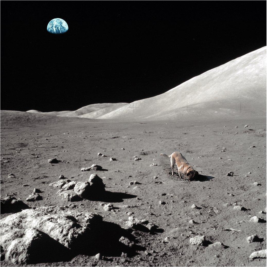 Lunar Rover https://t.co/NbiYCM1zrj