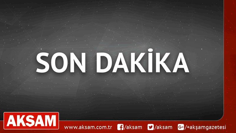 #SONDAKİKA TSK: Mağarada saklanan 15 PKK'lı terörist etkisiz hale geti...