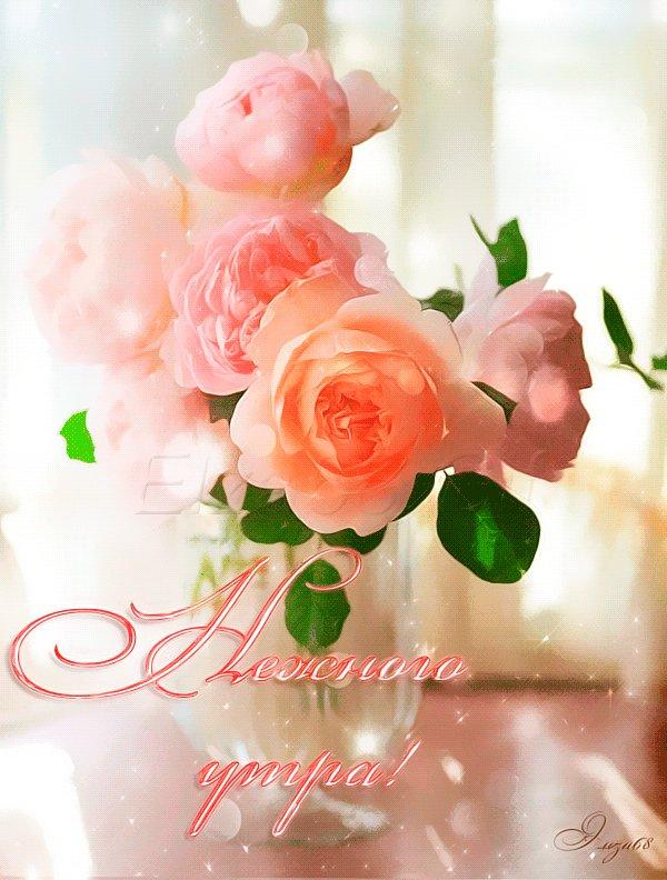 Днем, картинки розы доброе утро анимация