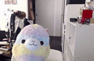 that time I walked in on rainpaca during an important interview with BBC https://t.co/Ty653NIkD9