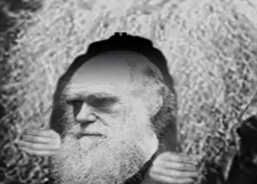 Ya lo dijo Darwin , me gustan mucho las especies.#TopChef7 https://t.c...