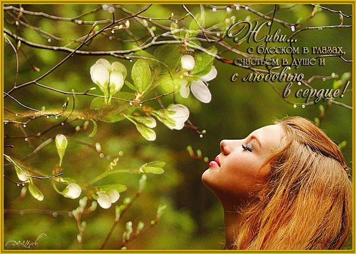 Розы, открытка молодость в твоей душе