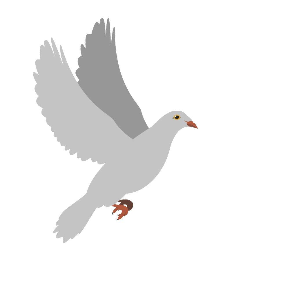 Мая карандашом, анимация картинка голуби