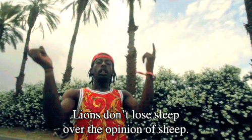 Lions Don't Lose Sleep http://t.co/ksTH8uPKHN