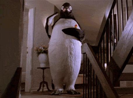 So long, Penguins. http://t.co/KD3EMYAkuF