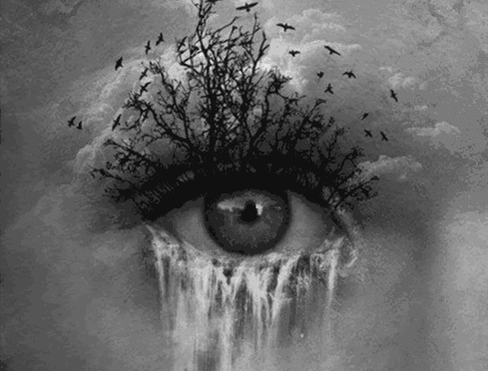 GIF: Raven Forest Waterfall Eye http://t.co/4oaVCsa0kW http://t.co/Tmy4oncnja