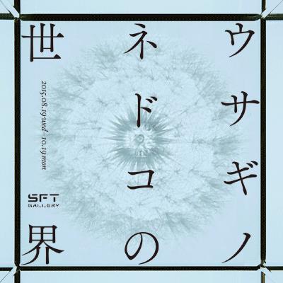 【SFT GALLERY】「ウサギノネドコの世界」。本日初日です。京都を拠点に自然の造形美を生活で楽しむことを提案するウサギノネドコ。これまでのプロダクトを展示、販売します。/SFT  https://t.co/RlH7W5KaNJ http://t.co/uC3y3K5pJI