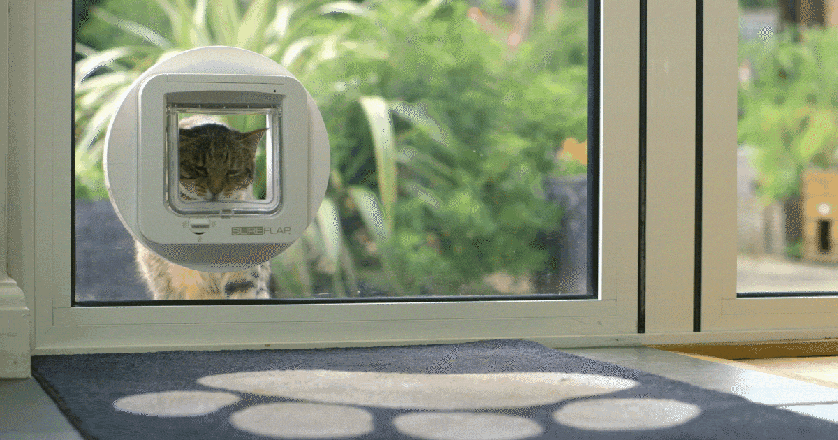 うちの猫だけが通れる猫用ドア?ペット産業での顧客管理・IoT 活用法 http://t.co/Hsgc30i7tG 1兆4,000億円と推計されるペット産業での最新のテクノロジー利用法とは? #sfdcj http://t.co/p2tv0xWm4W