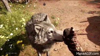 PETTING CONFIRMED! I'M COMING FOR YOU TOOTHLESS. #UbiBuddy #UbiLove @FarCrygame https://t.co/VJR53EeZxo