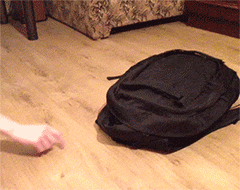 Beware the black backpack of doom! https://t.co/5Nk0wxf1kT