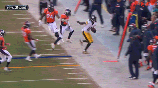 What a piece of shit. RT @TheCauldron: Martavis Bryant wrecks Wade Phillips https://t.co/TozHbFOMmu
