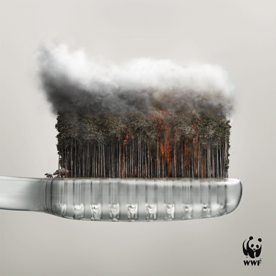 We breathe what we buy https://t.co/ouXeUhFNtp #palmoil https://t.co/Ew7HxBkZkZ