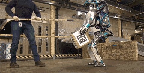 I'm 90% sure this is how the robot uprising begins https://t.co/1z51FDnQDH https://t.co/9WkofGN1Dp