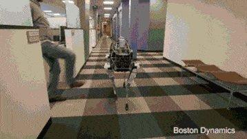 Algún día los robots se acordarán de esto