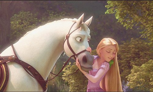 Forget Prince Charming… I'll take the horse! #Horsehour https://t.co/mxlRJOqg84