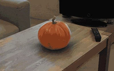 Once in a million times, Giphy on Slack does you good  /giphy gourd https://t.co/9WmS25GBOL