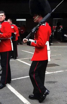 @Rossmac212 The Queens  Grenadier Guards are looking for their dog. https://t.co/W4OPk9zWqa