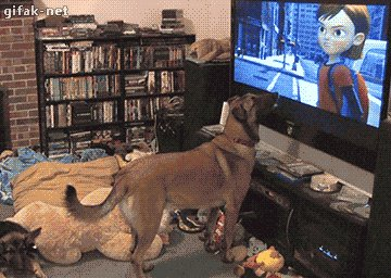 @keriqbaum @Rossmac212 @viewfrommyoffic Watch Dog https://t.co/XoyxofQRxb