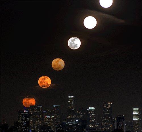 満月 만월 로스앤젤레스에서 기록한 달이라고.. https://t.co/LTJusumA97