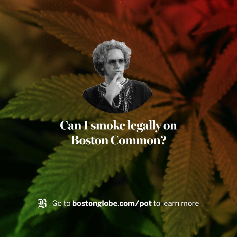 Curious what marijuana legalization could mean for Massachusetts?