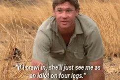Man! has me in my feels! Happy Birthday Steve Irwin