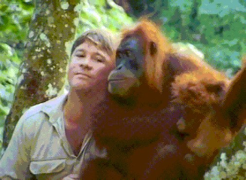 Happy birthday to one of the true Legends, Steve Irwin. We miss you bud, RIP.
