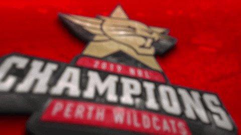 Perth Wildcats's photo on Wildcats